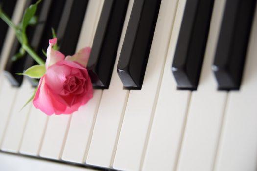 ピアノの調律の頻度は?調律する理由や調律を放置すると起きる被害